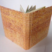 A Dorset Flora/artist's book (cover) : Solar Etching : Ruth Oaks