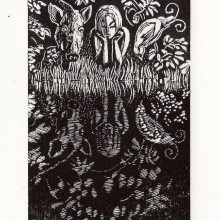Forest Pool : Wood Engraving : Ruth Oaks